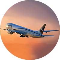 domestic-flights